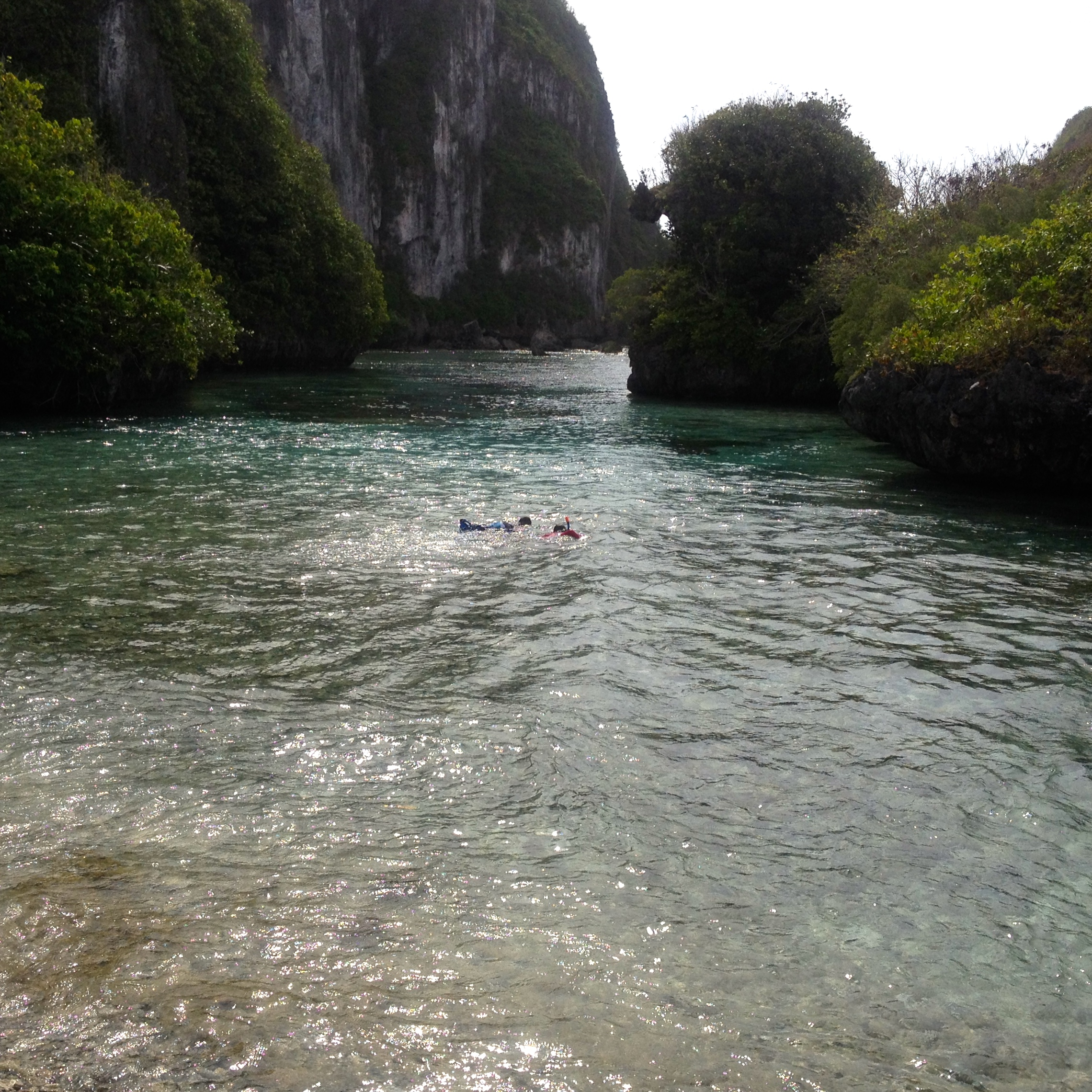 Swimming With Sharks At Spanish Steps, Guam